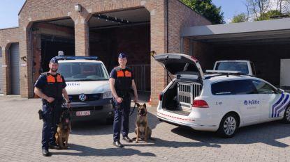 Eigen patrouillehonden voor politie Kempenland
