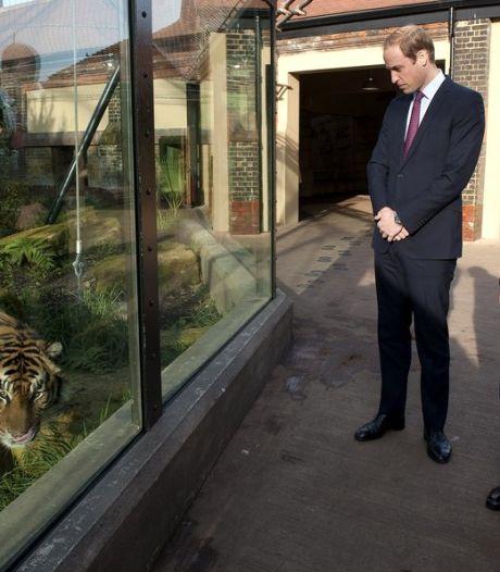 Britse prinsen houden top tegen stroperij en illegale handel