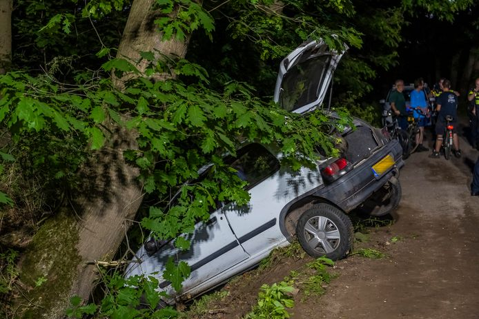 De automobilist belandde in een droge greppel en sloeg daarna op de vlucht.