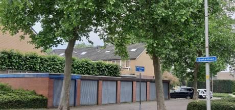 De veelbesproken platanen in Rijssense straat worden nog niet gekapt