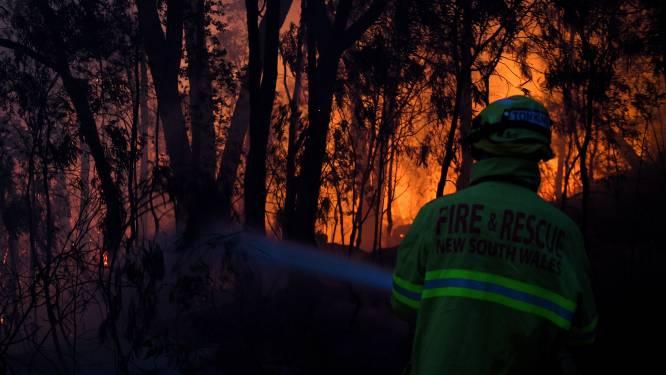 Twee vermiste personen dood teruggevonden: dodentol van bosbranden in Australië loopt op tot 12