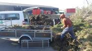 Recyclageparken in Deinze en Landegem vanaf vrijdag open voor meer afval