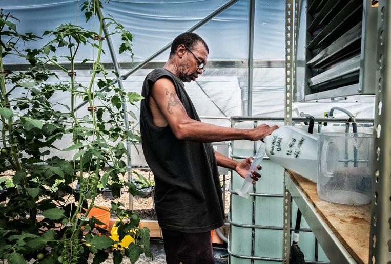 In Recovery park in Detroit kweken ze niet alleen groenten van hoge kwaliteit, ze begeleiden werknemers met afkickprogramma's en alfabetiseringscursussen. Beeld Tim Dirven