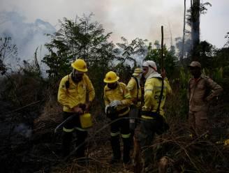 Bolsonaro weigert noodhulp G7 voor bosbranden Amazonegebied