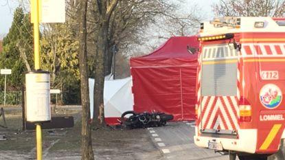 Motorrijder (29) sterft na klap tegen boom