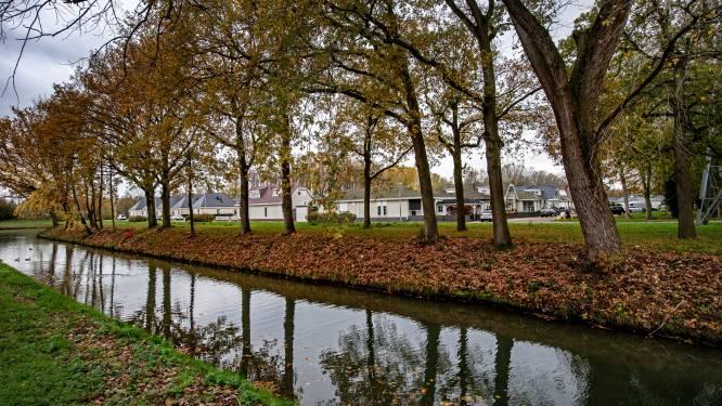 Tekort aan woonwagens in Nijmegen: aantal plaatsen moet meer dan verdubbelen
