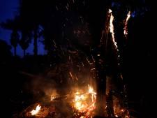 Wie heeft de branden gemeld en hoe zit het met de complottheorieën?