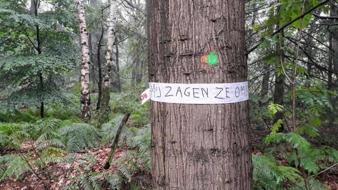 Reeshofbos: bewonersprotest tegen bomenkap.