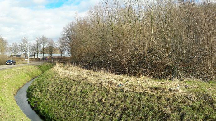 Het terrein aan de Schansdijk in Zevenbergen, ooit in beeld voor een politiebureau, staat nu nog vol groen.