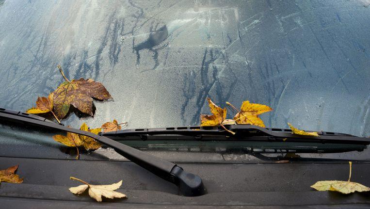 Herfstbladeren op een beslagen autoruit. Beeld anp