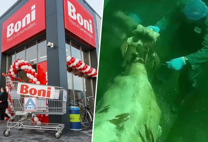 Bij de vestigingen van Boni, zoals deze in Genemuiden, ligt vanaf nu ander varkensvlees in de winkel vanwege de schokkende beelden.