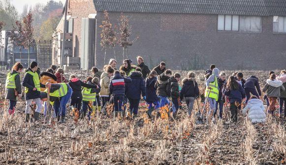 De leerlingen hielpen massaal bij het aanplanten van het nieuwe Schoondalbos in Sint-Eloois-Vijve.