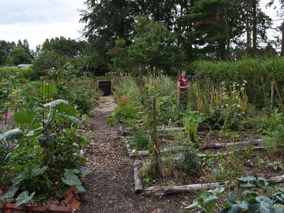 Tuinontwerpster Marleen Massonnet heeft een koele, onderhoudsvriendelijke tuin met een grote biodiversiteit in elk seizoen.