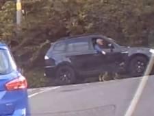 """Il promène son chien tout en conduisant: """"Le summum de la paresse"""""""