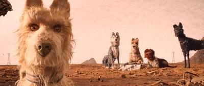 Breda krijgt kijkje achter de schermen bij hondenfilm Wes Anderson