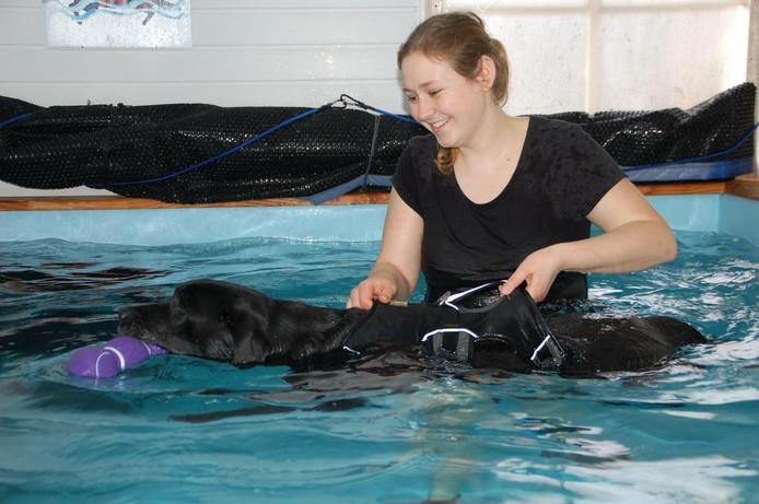 Britt van Roosmalen tijdens de revalidatie van een hond in haar zwembad