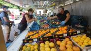 Geen kermis in Mazenzele en mondmasker ook verplicht in horeca: zo bindt Opwijk strijd aan tegen corona