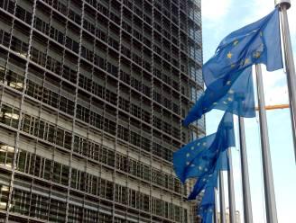 Europese Commissie met grove borstel door wetten