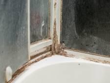 Met dit paardenmiddel maak je de vloer van de douche schoon