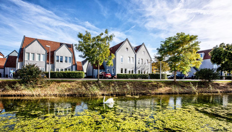Leidscherijn in Utrecht. Planoloog Han Lörzing zegt over vinexwijken: 'De mensen die er wonen, vinden het fantastisch. Het zijn modelwijken.' Beeld Raymond Rutting/de Volkskrant
