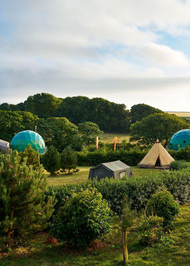 Koepelvormige shelters en tenten staan verspreid over het terrein van de ecologische glampingsite Loveland Farm in Devon.  Beeld Hannes Vandenbroucke