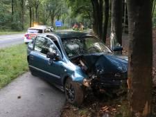 Auto ramt lantaarnpaal en botst tegen boom in Rozendaal, man gewond