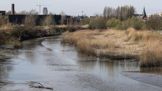 Omwonenden van Schelde opnieuw massaal gestoken door knijten: na jaren aanmodderen kan er nog steeds geen water door rivier