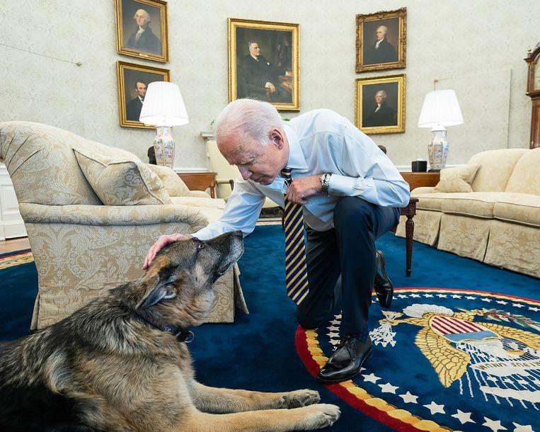 President Joe Biden met zijn hond Champ in het Witte Huis.  Beeld Adam Schultz / The White House