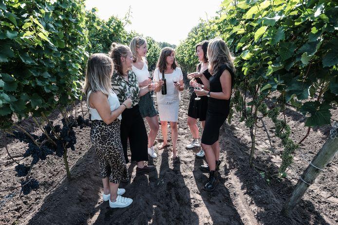 Wijn proeven op een Winterswijkse wijngaard. Foto ter illustratie.