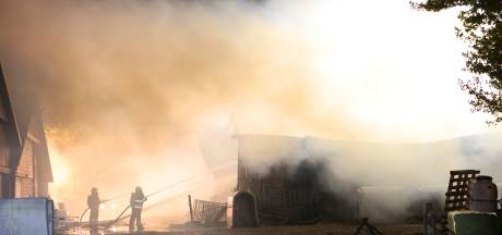 Veulen en kalf overleden bij fikse brand in Bruchem