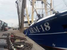 Nederland wil dit najaar proberen het Europese verbod op pulsvisserij ongedaan te maken