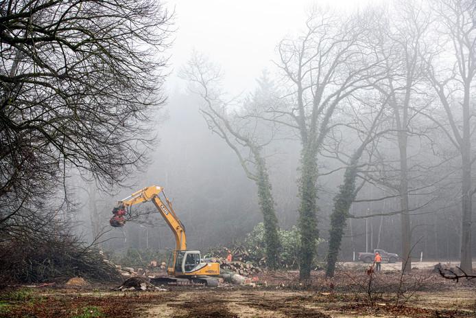 Bomen maken plaats voor de nog aan te leggen Parklaan.