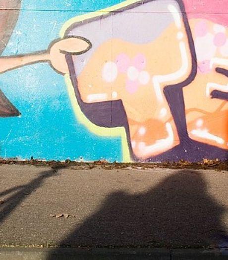 Veenendaal heeft geen geld voor graffitikunst in tunnels