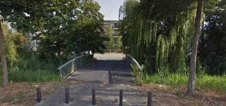 Veenendaalse brug voor een euro verkocht aan Leiden