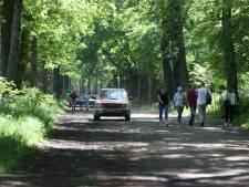 Boa omvergereden door paard en ruiter in Baarn, politie start zoekactie naar dader