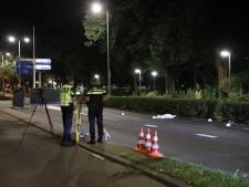 Dronken bestuurder die vrouw (70) en hond op Gordelweg doodreed moet één jaar de cel in