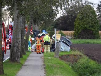 Auto knalt tegen boom en eindigt in de gracht aan de overkant: brandweer moet bestuurster bevrijden