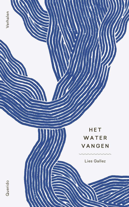 Lies Gallez, Het water vangen, Querido, 326 p., 20,99 euro. Beeld rv
