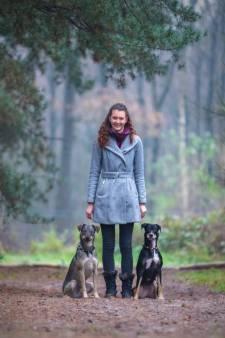 Hoe spoor je agressief gedrag bij honden op? 'Wij als mensen missen vaak signalen die een hond geeft'