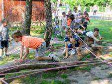 Van de 17 basisscholen in Hof van Twente krijgen er 12 een groen(er) schoolplein