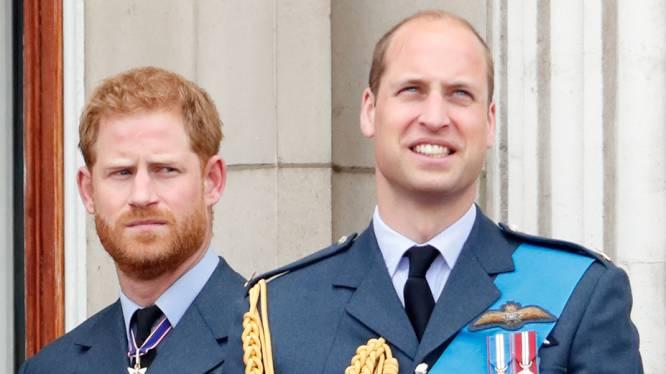 """Ruzie over vermeend pestgedrag Meghan ligt mogelijk aan basis van breuk tussen Harry en William: """"De confrontatie was hevig en bitter"""""""