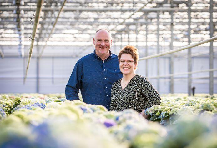 Kees Preesman en zijn vrouw Colinda tussen de hortensia's die vol in bloei staan.