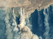 Dit is wat je moet weten over de bosbranden in Australië