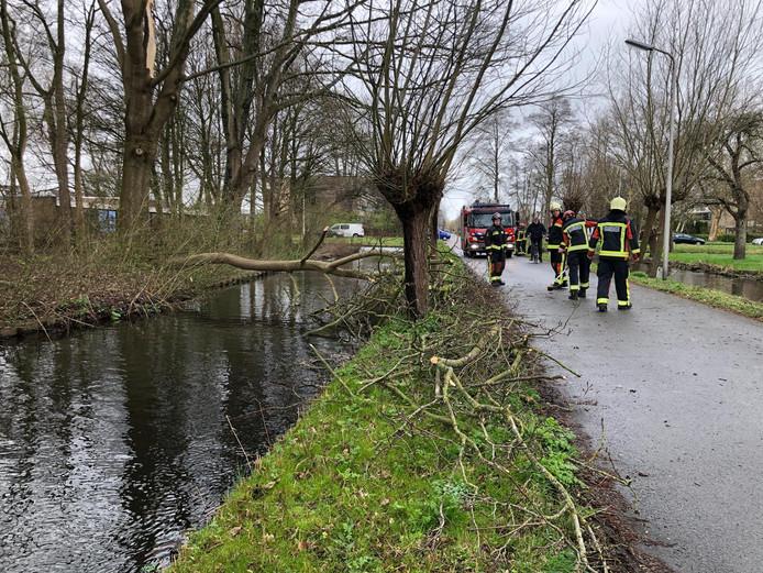 De brandweer was snel ter plaatsen bij een boom die op de Bloemendaalse weg in Gouda viel. Hij is in stukken gezaagd en in de berm gelegd. Een deel van de boom ligt nog over de sloot en wordt later verwijderd.