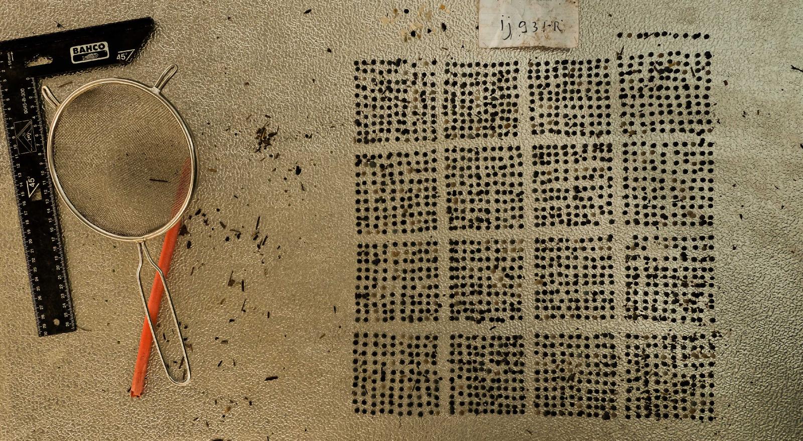 De aangetroffen korrels in een zoekgebied van 50 bij 50 centimeter in de IJssel bij Zutphen.