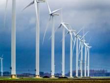 Commissie: 'Meer aandacht voor vleermuizen bij windmolens De Geer'