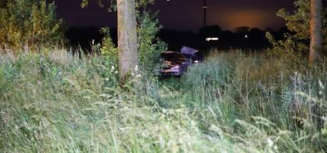 Bestuurder verongelukt op A2, auto belandt tientallen meters verderop in weiland