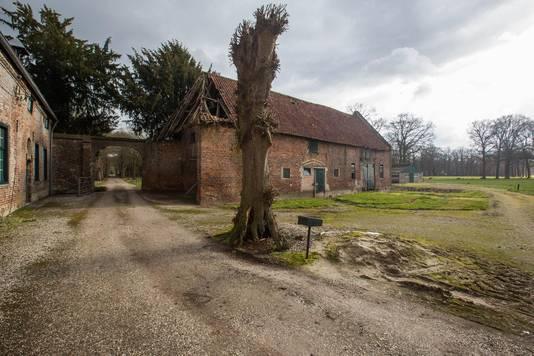 In dorpen op het platteland staan vierkantshoeven, zoals de Laathoeve in Hamont-Achel, leeg.