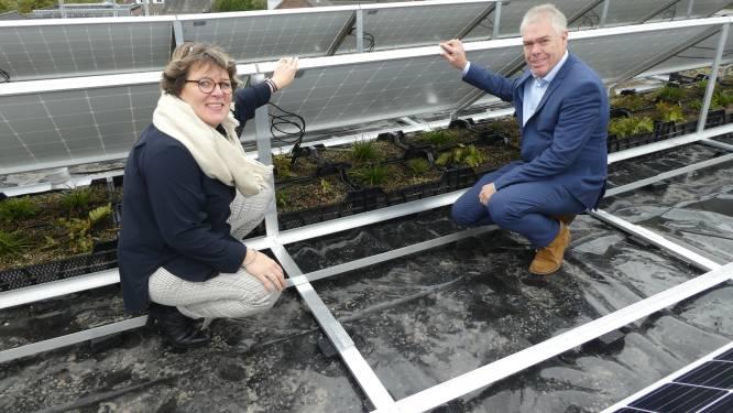 Koud klusje voor zonniger dagen op dak gemeentehuis Haaren