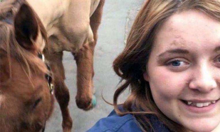 paard selfie